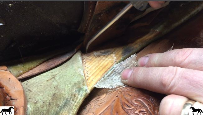 Leaving the saddle on a horse during transport is a common practice but it can end up badly.